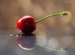 Just One ... (MargoLuc) Tags: cherry red sweet fruit spring reflection bokeh golden natural light window stilllife green indoor minimalism