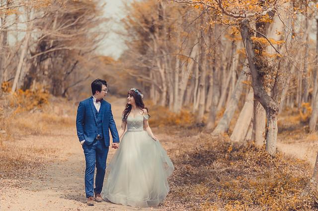 33844317104 fffd634923 z 台南婚紗景點推薦 森林系仙女的外拍景點