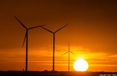 Jugando con el sol (cvielba) Tags: valladolid atardecer eolicos molinos peñaflordehornija puestadesol