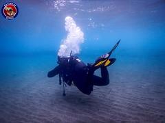"Kalymnos Diving - www.scubakalymnos.com • <a style=""font-size:0.8em;"" href=""http://www.flickr.com/photos/150652762@N02/33871950013/"" target=""_blank"">View on Flickr</a>"