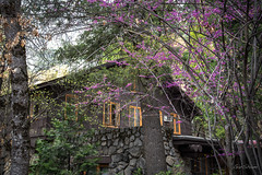 Park Housing (gwshamb) Tags: california natural color yosemite nature nationalpark mountains sierras house ranger sierranevada light