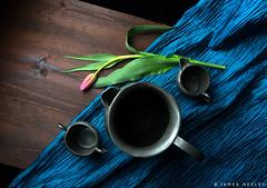 Still Life (James Neeley) Tags: stilllife santafeworkshops newmexico fineart jamesneeley