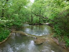 Travertine Creek Falls (jimmywayne) Tags: oklahoma murraycounty sulphur chickasaw nationalrecreationarea travertinecreek travertineisland falls waterfall