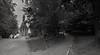 Two Ways (FSR Photography) Tags: canon400d canon canondslr blackandwhite blackwhite schwarzweiss schwarzweis schärfentiefe schatten sw bw monochrom monochrome fsr fsrphotography