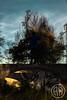 (alexrf96) Tags: alexrf96 aleruiz alexruiz alejandroruiz alejandroruizfernándezdeangulo photo photograph foto fotografía canon canonista sevilla seville andalucía andalusia españa spain retrato portrait robado stolen retratorobado stolenportrait urbex urbanphoto streetphoto abandono man boy chico hombre parkour cielo sky