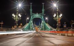 Liberty Bridge (GrandJr) Tags: grandjr nikon d3 50mm 14 ais nd hoya pro nd8 danube river longexposure budapest building city ngc night fx