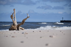 Minimal view maximum happiness (navarrodave80) Tags: beach sand root sea blue blues baltic pier holiday polarize polarizefilter nikon d3300 davechmiel chmiel