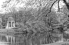 Marieninsel mit dem Venustempel (chipdetty) Tags: germany magdeburg stadtpark rotehornpark marieninsel venustempel adolfmittagsee brücke bw bnw blackandwhite