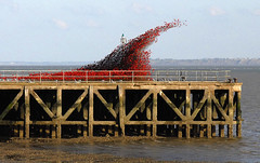 Wave of Poppies (John_E1) Tags: poppies wave bargepier essex shoeburyness thames estuary