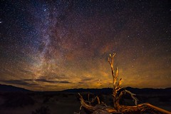 Milky Way in Death Valley (TaffyRaphael) Tags: dvday1 deathvalley milkyway sky desert longexposure night nightsky stars