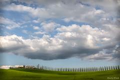 Val d'Orcia , Toscana . Val d'Orcia, Tuscany (antoninao) Tags: valdorcia canon cielo campagna canon5dmarklll nuvole clouds campo blue cieli strada ngc