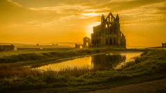 The Abbey (Mark Heslington Photography) Tags: whitby abbey north yorkshire england uk united kingdom scarborough landscape sunset reflection english heritage golden panorama canon 5d mark iii 1635m sun color