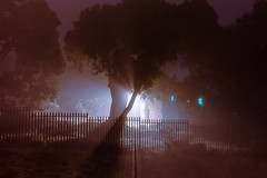 Untitled (elsableda) Tags: night long exposure cape town southafrica elsa bleda church tree lights beam shadow nature huse house haunting
