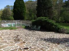 Terras na hogedrukreiniger (tessadejong-severijns) Tags: terras terrace clean schoon hogedrukreiniger green groen bomen trees