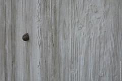 Escalade / Climbing (Fontenay-sous-Bois Officiel FRANCE) Tags: fontenay fontenaysousbois regionparisienne valdemarne iledefrance 94 94120 fsb france wood escargot snail outside extérieur canon canong1x macro texture bois