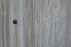 Escalade / Climbing / Escalada (Fontenay-sous-Bois Officiel FRANCE) Tags: fontenay fontenaysousbois regionparisienne valdemarne iledefrance 94 94120 fsb france wood escargot snail outside extérieur canon canong1x macro texture bois french beautiful nice belle buena bonita hermosa francia frances escalada textura madera artistic artistique artístico caracol