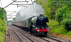 cheshire scotsman (midcheshireman) Tags: steam train locomotive gresley pacific 60103 flyingscotsman winsford cheshire mainline cathedralsexpress
