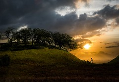 The Man Who Went Up a Hill and Other Stories (ShutterJack) Tags: adventure climb clouds forest grass hike hill meadow pasture silhouette summer sunset trees up walk