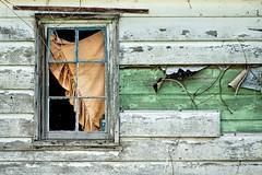 Window of Abandoned Building 538 B (jim.choate59) Tags: decay rural ruraldecay window hww wall broken curtain clackamascounty oregon jchoate on1pics oncewashome