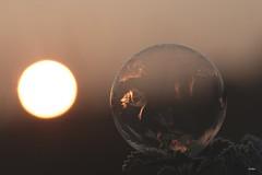 Soleil ! (mars-chri) Tags: bulle gèle lever éphèmère lesétangs auverssuroise valdoise cristaux