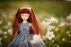 fairy queen (koroa) Tags: bjd doll daydream flowers coco crown
