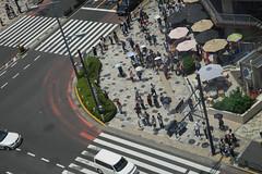 20170629_10_SIGMA 24-70mm F2.8 DG OS HSM A017 SAMPLES(SA-mount β-version) (foxfoto_archives) Tags: sigma 2470mm f28 dg os hsm a017 samples samount βversion sony a7ii mc11 sae sa mount β version developed by adobe photoshop lightroom cc 2015101 japan tokyo shibuya harajuku meiji jingu meijijingu snap 日本 東京 渋谷 原宿 明治 神宮 明治神宮 スナップ サンプル
