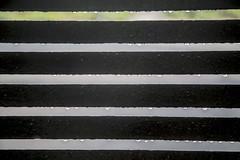 Water Drops (adamopal) Tags: canon canon5d canon5dmkiii canon5dmarkiii waterdrops freshrain water drops fresh rain slats black grey white green