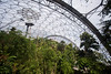 Eden Project (jimj0will) Tags: edenproject cornwall kernow path biomes greenhouses hexagons plants botanical botany england britain gb uk europe