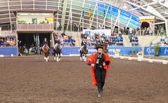 17429_Sydney_CDI_Evening_Pres_6956.jpg (FranzVenhaus) Tags: athletes dressage australia equestrian riders horses ponies rug siec nsw sydney newsouthwales aus