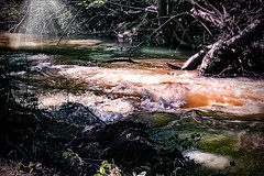 A  beautiful creek