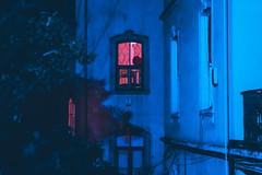 Untitled (elsableda) Tags: night istanbul window building street urban city midnight turkiye turkey flower architecture