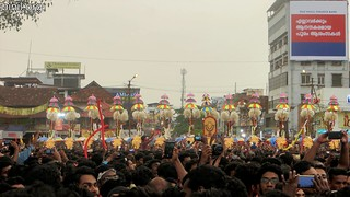 Thrissur Pooram 2017 -10