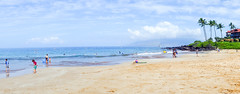 DSC03897.jpg (jaғar ѕнaмeeм) Tags: kihei hawaii unitedstates us maui 2017 spring wailea fairmont
