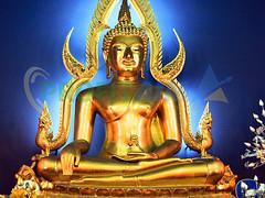 Buddha-Purnima-2017-Profit-aim (profitaim) Tags: buddha purnima 2017 profit aim research todays occasion