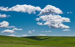 Simple. (ebhenders) Tags: palouse prairie washington wheat fields green blue clouds sky grass