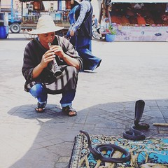 Snake charmer, Place Jemaa el-Fna, Medina, Marrakech (Cozy61) Tags: instagramapp square squareformat iphoneography uploaded:by=instagram gingham •marrakech morocco travelphotography travel cobra snakes fujifilm xpro1 culture souk cafedespices justgoshoot snakecharmer photooftheday day1 x100 fujifilmxseries local koutoubiamosque place jemaaelfna el jadid medina market mosquée koutoubia