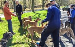 van saun earth day walk-23 (Visual Thinking (by Terry McKenna)) Tags: greyhound van saun park paramus newjersey unitedstates us