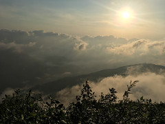 Going down from Adam's Peak (__Alex___) Tags: sunrise srilanka sri lanka 2017 pic adam peak sun flare mountains montagnes clouds discover trek view morning paysage travel pada iphone6s iphone nature