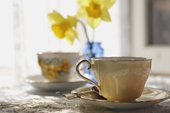 tea for two (s@ssyl@ssy) Tags: vintage old antique lace tea teacups daffodils yellow bythewindow intheshed