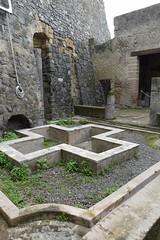 008 House of Galba, Peristyle, cruciform piscina, Herculaneum (2) (tobeytravels) Tags: herculaneum houseofgalba peristyle