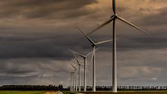Tulpen route Flevoland-40 (Louis Swart) Tags: tulpen windmills flowers collors mills landscape air electric