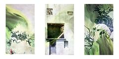 Série du 24 07 16 : Sete (basse def) Tags: sete walls streetart