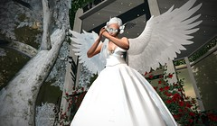 Evening Prayer (lauragenia.viper) Tags: analogdog bento catwa catya glamaffair lumipro maitreya secondlife secondlifefashion swank tashi tmcreation welovetoblog angel prayer mask wings white avatar virtual outdoor person girl tree gazebo twinkling lights roses fittedmesh