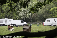 Travellers invade Essex Country Park (Ian Davidson photographer Protected by PIXSY www.p) Tags: brentwood southwealdpark travellers trespass urban camp camping caravans illegal lifestyle mobile outdoors poverty roma squatting trailer trucks vehicle