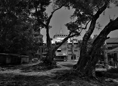 Wat Sacket (Antoine - Bkk) Tags: bangkok monochrome black white temple wat atmosphere darktable sacket mahakan fort community