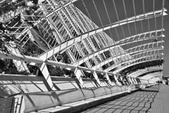 Longest bench in town (gerard eder) Tags: architecture architektur arquitectura city ciudades ciudaddelasartesyciencias calatrava cityofartsandsciences stadtderkünsteundwissenschaften bench lumbracle cac valencia europa europe españa spain spanien world travel reise viajes outdoor