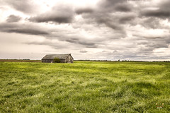 Time Is Not on Its Side (SteveFrazierPhotography.com) Tags: barn wood wooden old dilapitated decaying field farm farmland farming agriculture illinois il chili clouds sky day daytime daylight afternoon springtime spring usa america midwest rural boards outdoor building bird cloudy overcast rain rainy grass prairiegrass plowed weathered vintage historic historical yesteryear