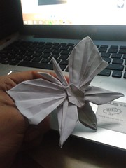 butterfly : nguyen Than (javier vivanco origami) Tags: butterfly nguyen than javier vivanco origami ica peru