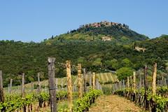 2017 005 Italy 16 (ngari.norway) Tags: italy ngariphotos travel europe ngari photos tuscany toscana