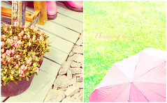 (mintukka) Tags: umbrella pastel rubberboots spring grass diptych gardening pink dippy soft pinkumbrella tulips flowers pinktulips tulip detail details